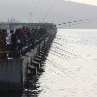 Рыбаки :: Эдуард Куклин