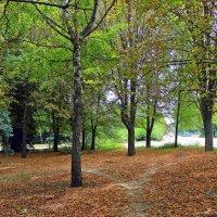 Гуляет осень в подворотнях , и шелестит опавшею листвой. :: Валентина ツ ღ✿ღ