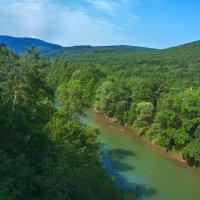Зеленая река :: vladimir