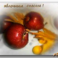 Солнцем радостным согреты, красны яблоки крупны. .... :: Людмила Богданова (Скачко)