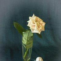 Этюд с цветком(вариант) :: Aнна Зарубина