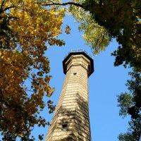 башня обозрения в парке ГОМЕЛЯ :: Александр Прокудин