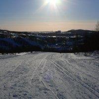 Лыжня зовет! :: Александр Заварухин
