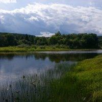 Сибирская река Татарка. :: Илья Су-фу-дэ