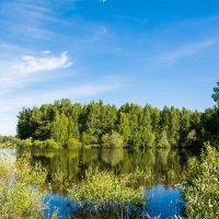 лесное озеро :: Vladimir Mansurov
