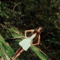 Королева леса :: Ann Jain
