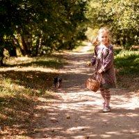 Прогулка по лесу. :: ольга каверзникова