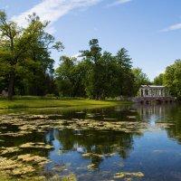 В Екатерининском парке... :: Sergey Apinis