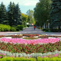 Парк :: Slava Voronov
