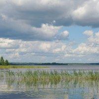 Озерный пейзаж. :: Юрий Шувалов