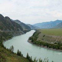 Река Катунь :: Наталья Карышева