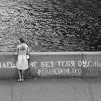 . :: Владимир