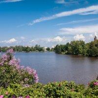 Озеро Разлив :: Виталий