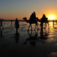Марокко :: Роберт Гресь