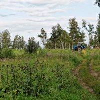 Сельская жизнь :: Дмитрий Конев