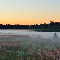 Река-туман :: Алексей К