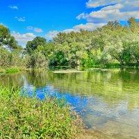 Река Оскол :: Алена Карташова