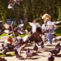 В компании голубей) :: Юлия Клемешова