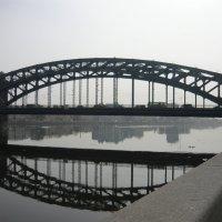 Мост Петра Великого :: Вера Щукина