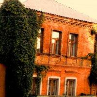 Дом на ул.Литвинова :: Лебедев Виктор
