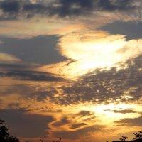 Рассветное небо. :: Антонина Гугаева