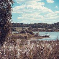 Летняя жара :: Андрей Куприянов
