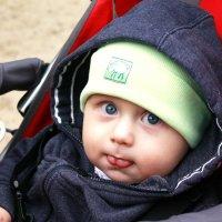 Малыш :: Мария Логинова