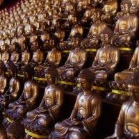 Армия будды :: Жанетта Буланкина