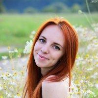 Привет, ромашки :: Алина Прохорова