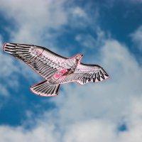 Воздушный змей :: Сергей Маршалков