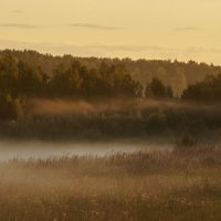 Утренний туман 2 :: Николай Алексеев