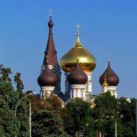Свято-Пантелеевский монастырь, купола :: Александр Корчемный