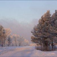 Розовое утро :: Наталия Григорьева