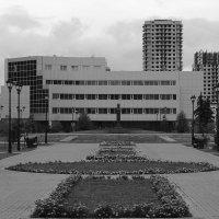Сквер им.Ермакова :: Дмитрий Арсеньев