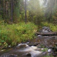 Скоро осень :: vladimir