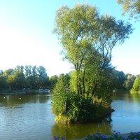 Прогулка в парке :: Катерина C