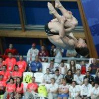 Чемпионат мира по водным видам спорта :: Павел Железняк