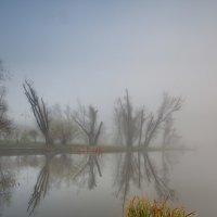 Туман в Москве :: Alexander Asedach