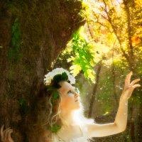 Сказочный лес :: Юлия