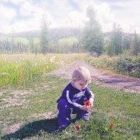 Малыш и цветок :: sveta_sch Sch