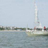 Sail :: Дарья Иваненко