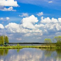 Летний день на Разливе :: Виталий