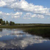 Облака в воде :: Valerii Ivanov