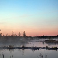 Рассвет над болотом. :: Татьяна Айги