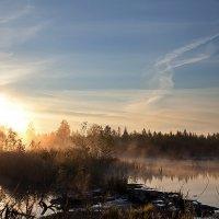 Рассвет над Шатурскими болотами. :: Татьяна Айги