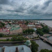 Выборг с высоты :: Алексей Кошелев
