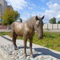 Памятник лошади Петрушке :: Наиля
