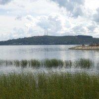 Волга :: Наиля