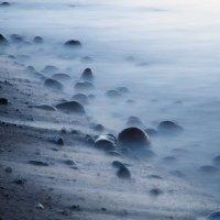 Неподвижны только камни :: Павел Кухоренко