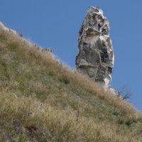 Дивы - меловые столбы :: Ирина Шарапова
